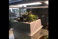 Garden Starter Series